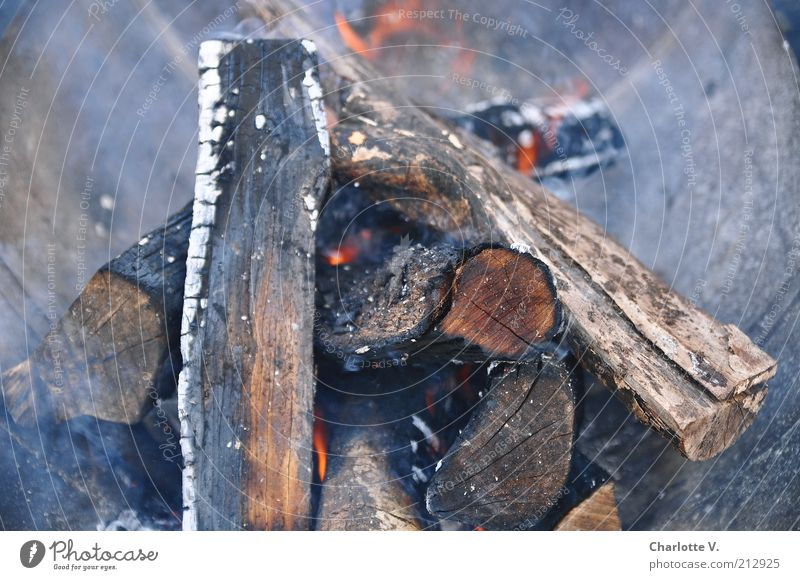 fireplace Ignite Fire Firewood Smoke Fireplace Wood Hot Warmth Gray Red Burn Glow Incandescent Embers Colour photo Subdued colour Exterior shot Close-up