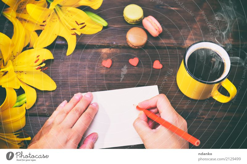 female hands with a red pencil Nature Plant Beautiful Hand Flower Red Leaf Black Yellow Bright Decoration Fresh Paper Coffee Delicious Card