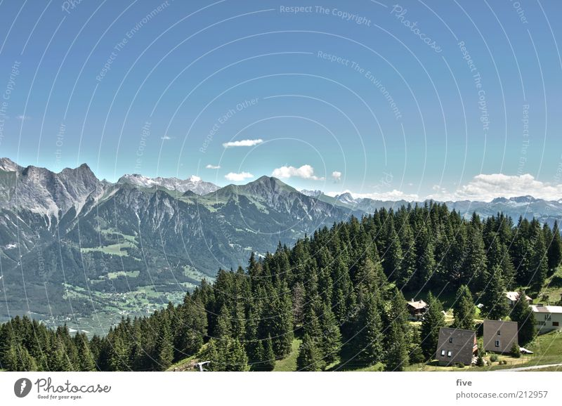 pardiel Leisure and hobbies Trip Mountain Environment Nature Landscape Sky Clouds Summer Weather Beautiful weather Plant Tree Forest Alps