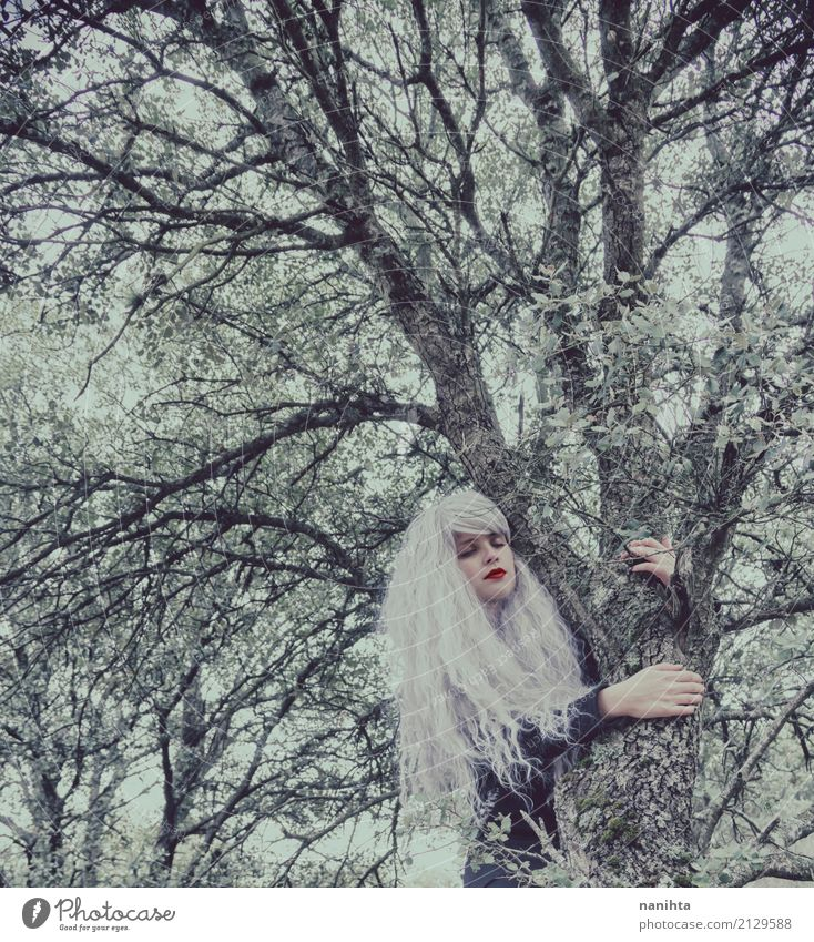 Young woman with white hair is hugging a tree Human being Nature Youth (Young adults) Beautiful White Tree Winter Forest 18 - 30 years Black Adults Environment