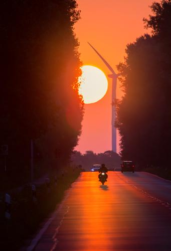 Sun Landscape Street Environment Moody Transport Weather Car Gold Fantastic Beautiful weather Driving Traffic infrastructure Passenger traffic Motorcycle