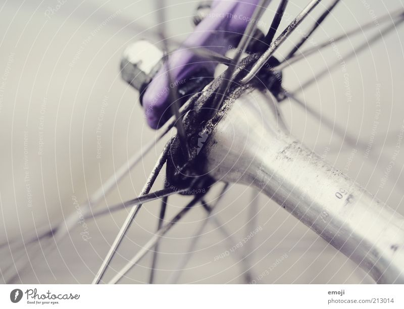 spoke Bicycle Metal Metal post Lubricant Gray Violet Spokes Colour photo Detail Macro (Extreme close-up) Neutral Background Shallow depth of field Axle