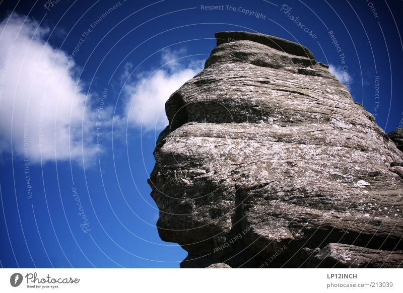 Sfinxul Mountain Environment Nature Landscape Sky Summer Rock Romania Tourist Attraction Stone Exceptional Famousness Blue Gray Whimsical Face Head Stone block