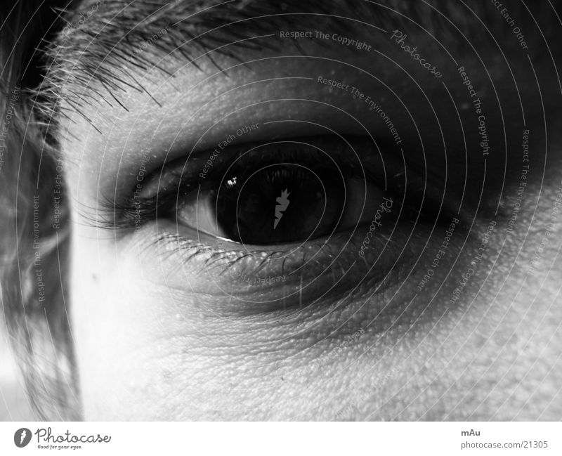 Man Eyes Eyelash Pupil