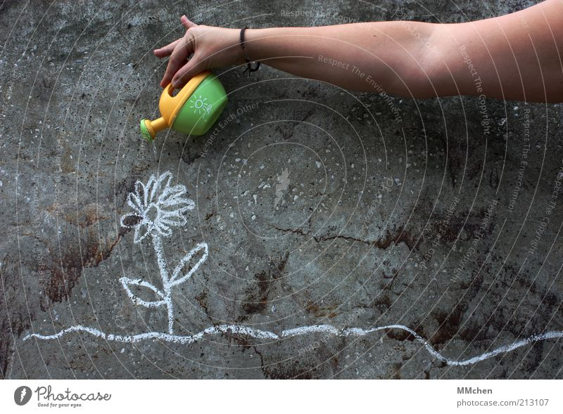 Flower Green Plant Yellow Wall (building) Gray Graffiti Arm Environment Concrete Facade Growth Cast Chalk Art Human being