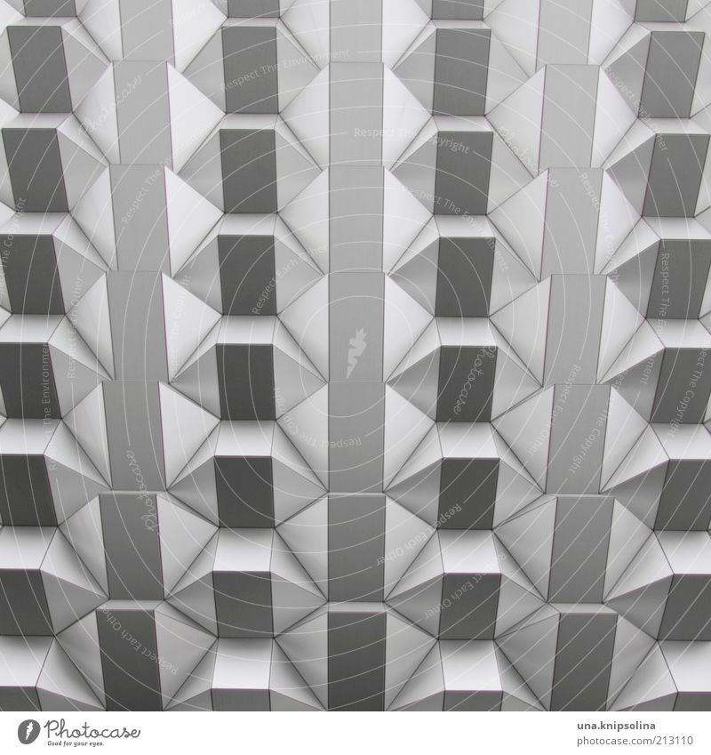 House (Residential Structure) Wall (building) Architecture Wall (barrier) Metal Facade Dresden Thorny Pattern Saxony Abstract Cladding