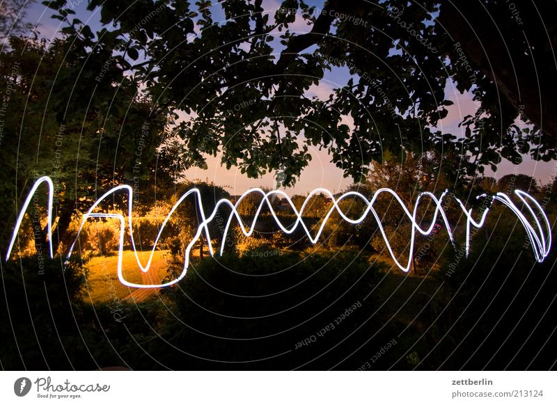 light wave Playing Garden Lamp Nature Tree Park Movement August Visual spectacle Line Wavy line Flashlight Sky Treetop Branch Long exposure Signal Curve Arch