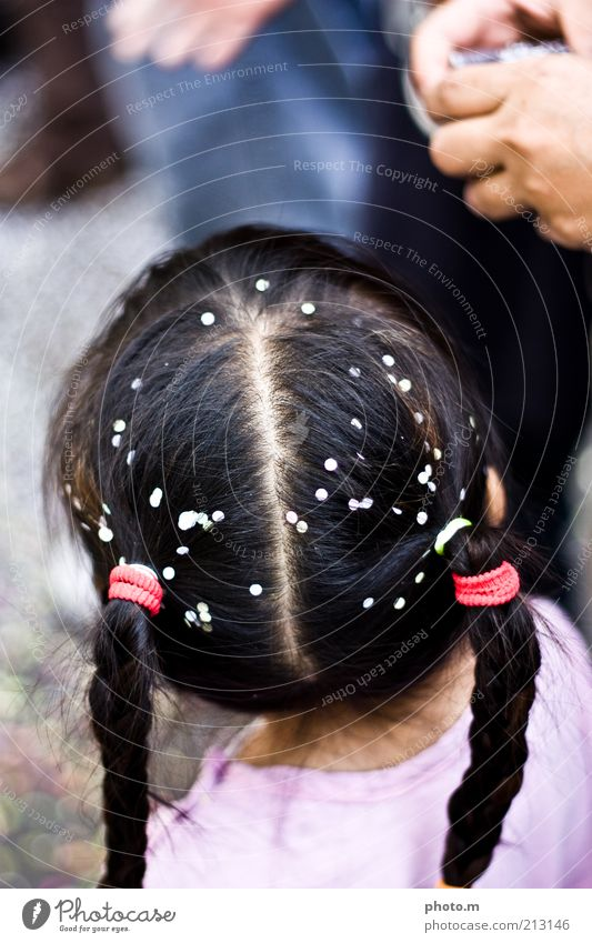 Carnival! Child Toddler Girl Hair and hairstyles 3 - 8 years Infancy Sympathy Braids Confetti Colour photo Exterior shot Copy Space top Day