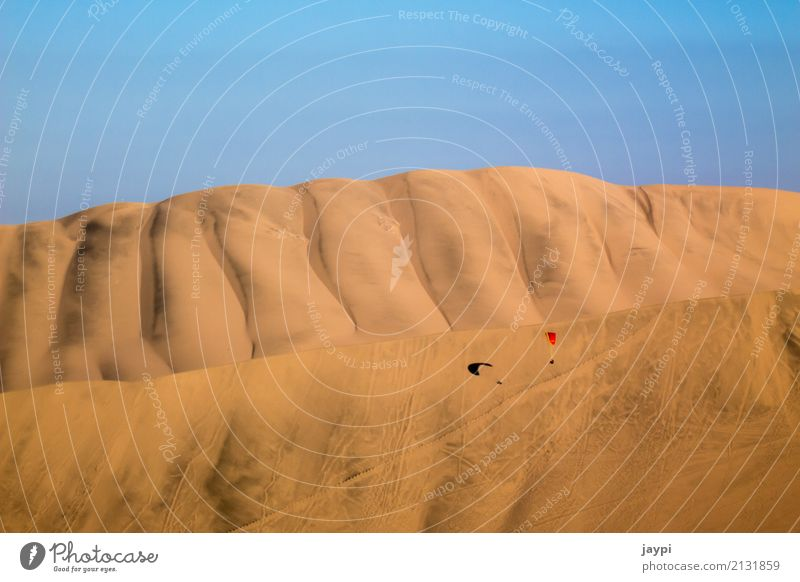 desert flight Paraglider Paragliding Adventure Freedom Desert Environment Landscape Sand Cloudless sky Beautiful weather Dune Aircraft Flying To dry up Dry