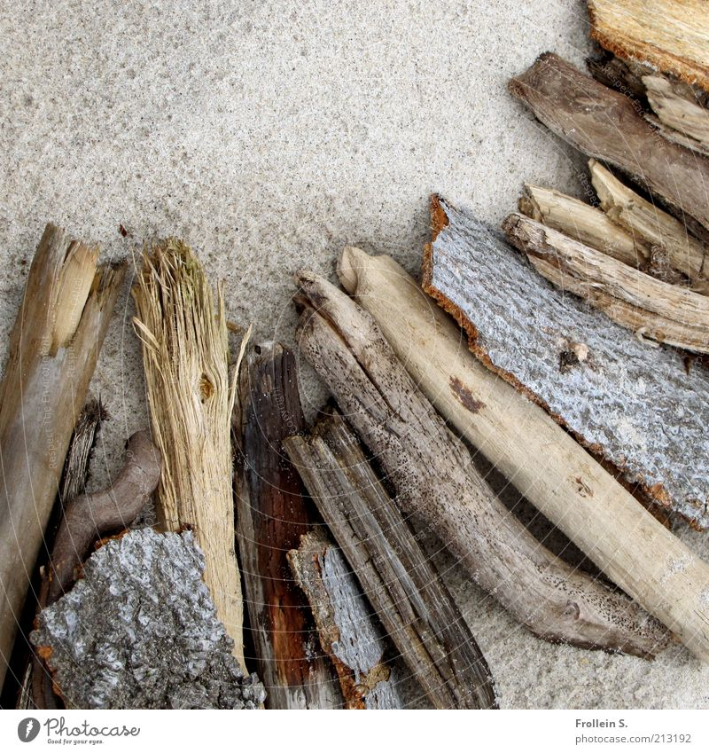 Nature Calm Wood Gray Sand Contentment Brown Esthetic Authentic Simple Natural Still Life Firewood Log Driftwood