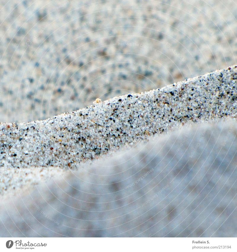 Granules for granules Nature Elements Sand Summer Beautiful weather Beach Baltic Sea Simple Near Natural Gray Calm Vacation & Travel Subdued colour