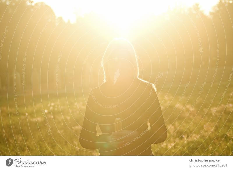 Human being Nature Youth (Young adults) Sun Summer Autumn Feminine Moody Bright Field Adults Gold Beautiful weather Dazzle Lens flare Young woman