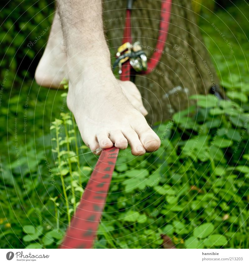 balance Leisure and hobbies Summer Sports Human being Young man Youth (Young adults) Feet 1 Stand Unwavering Wirewalker Hair Toes Red Green Tense Rope Barefoot