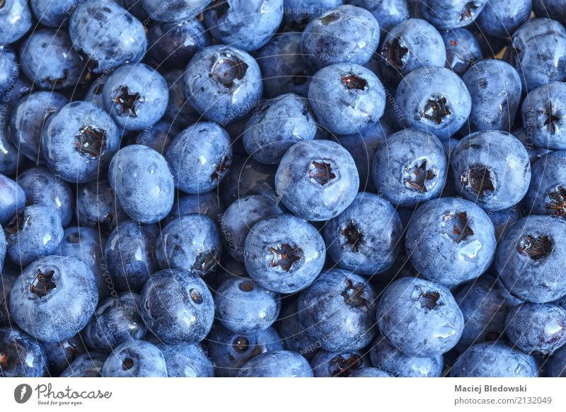 fresh blueberries Fruit Nutrition Eating Organic produce Vegetarian diet Diet Summer Nature Fresh Juicy Blue Healthy Blueberry food Berries ripe Raw bilberry