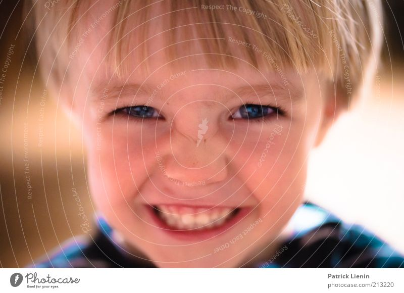 Human being Child Beautiful Blue Joy Face Eyes Boy (child) Emotions Happy Laughter Hair and hairstyles Head Contentment Moody Funny
