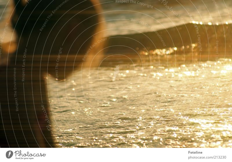 Human being Child Nature Water Girl Summer Ocean Beach Black Yellow Head Warmth Dream Infancy Waves Gold