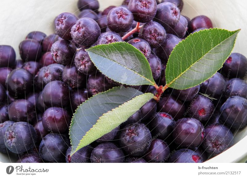 Aronia - apple berry Food Fruit Organic produce Vegetarian diet Summer Shopping Healthy Blue Violet aronia Leaf Bowl Vitamin Harvest Mature Cooking Fruity