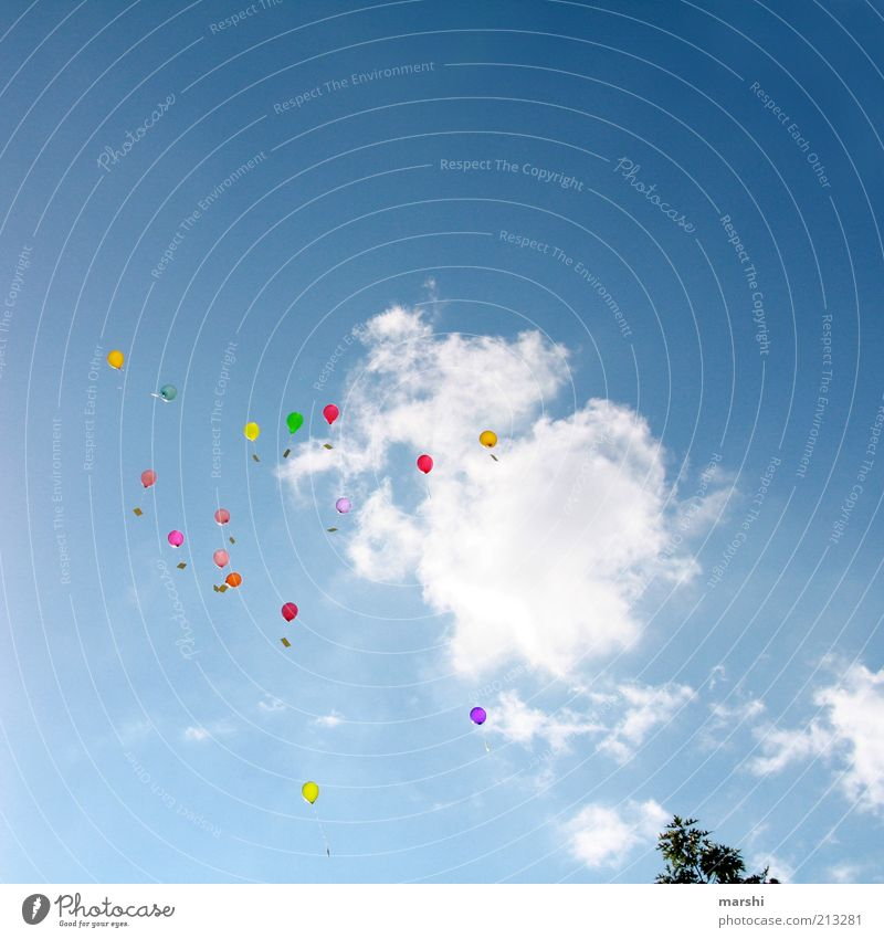 Dreams & Wishes Feasts & Celebrations Blue Multicoloured Balloon Clouds Sky Far-off places Desire Congratulations Tall Flying Floating Occasion Colour photo