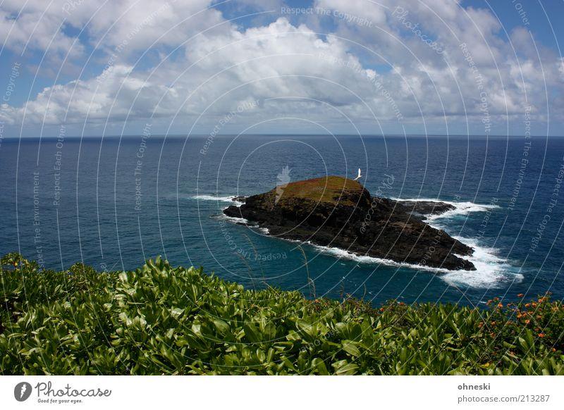 Nature Water Sky Ocean Blue Plant Clouds Loneliness Far-off places Landscape Air Coast Environment Horizon Rock Island