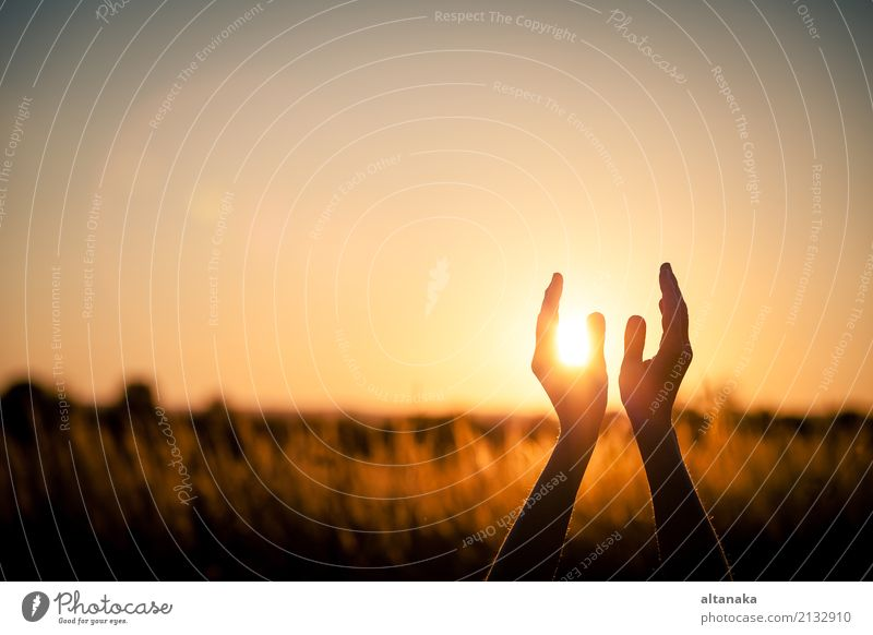 silhouette of female hands during sunset. Lifestyle Joy Happy Harmonious Relaxation Leisure and hobbies Vacation & Travel Freedom Summer Sun Yoga Human being