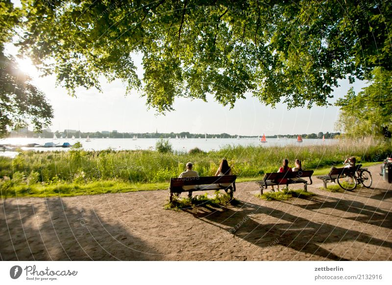Alster Vacation & Travel Body of water City Hamburg Hanseatic City Sky Heaven Nature Summer Town Townsfolk Quarter Tourism Coast Lakeside River bank City life