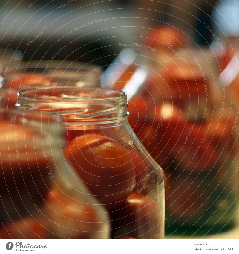 Tomatoes in a jar Food Vegetable Nutrition Preserving jar tomato jar Glass To enjoy Delicious Green Red Delicacy Conserve pot Stability Canned Self-made Supply