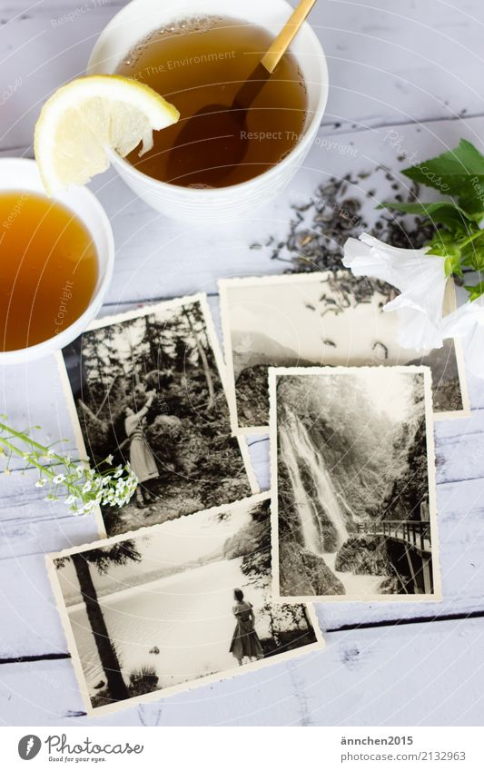 reminiscences Tea Drinking Remember Memory Old Senior citizen Former Photography Grandmother Grandfather Grandparents Black White Bright Relaxation Past Green