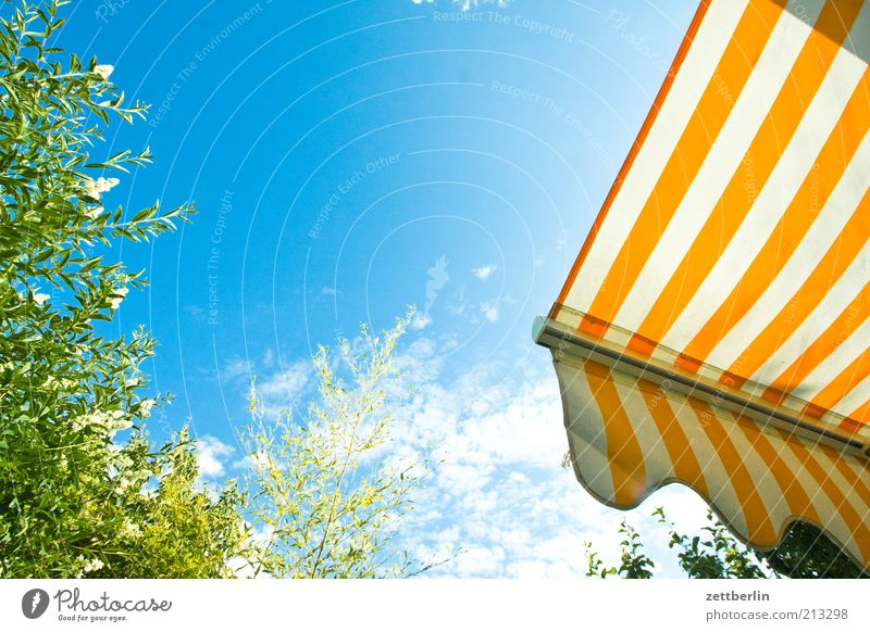wedding Garden Hot June Sun blind Blue sky Stripe Summer Clouds Colour photo Exterior shot Deserted Copy Space top Copy Space middle Morning Wide angle Sunlight