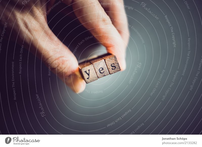 yes Resolve Text Select Elections Decide Indecisive Typography Characters Wood Stamp Parties Important Definite Parliament Government Democracy Democratic