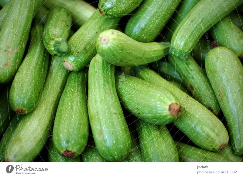 zucchini Food Vegetable Glittering Green Many Zucchini Structures and shapes Fruit Vegetarian diet Colour photo Multicoloured Exterior shot Day Shadow