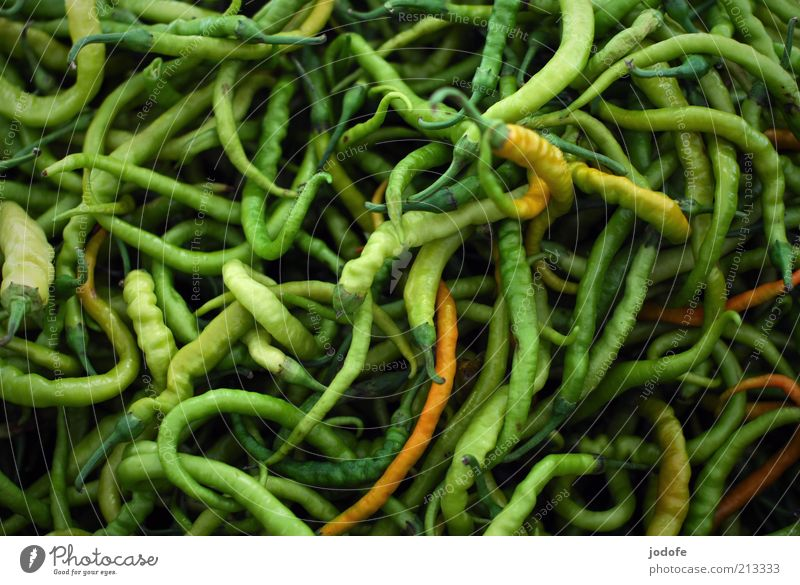 chilli Food Vegetable Herbs and spices Multicoloured Green Tangy Chili Vegetarian diet Muddled Many Structures and shapes Curved Colour photo Exterior shot