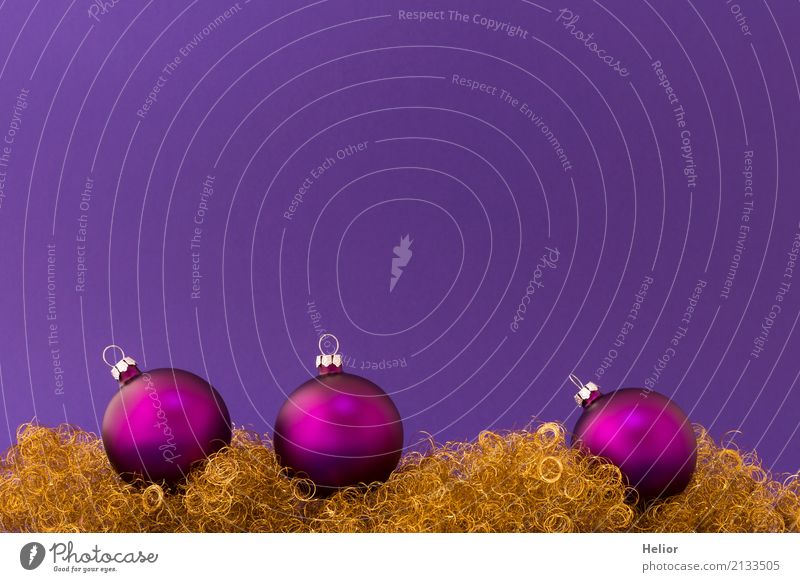 Violet Christmas balls on purple background with gold tinsel Design Joy Feasts & Celebrations Christmas & Advent Glass Metal Sign Ornament Sphere Glittering