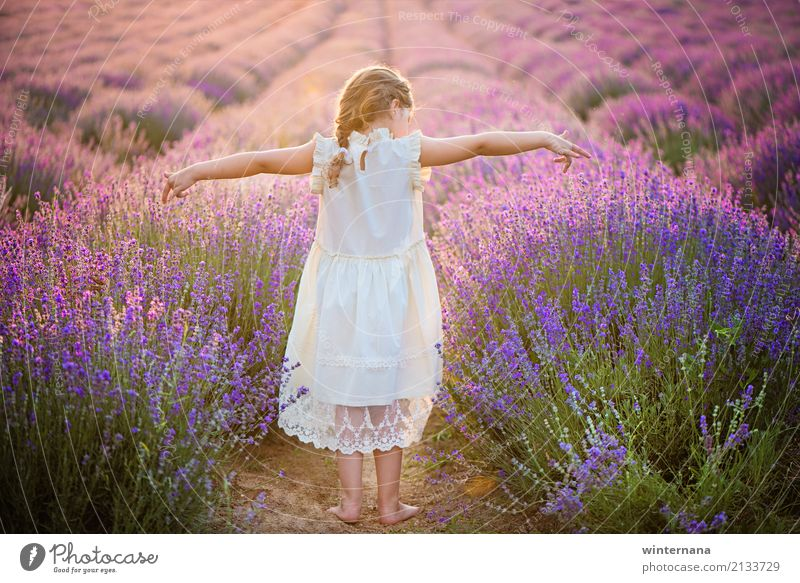 That freedom Child Girl Hair and hairstyles 1 Human being 3 - 8 years Infancy Environment Nature Earth Sunlight Summer Beautiful weather Field Dress Blonde