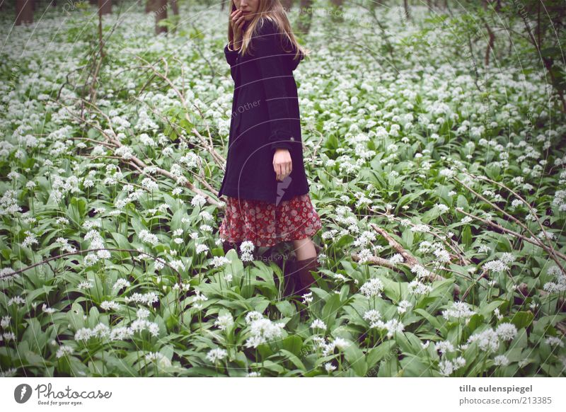 gretel Feminine 1 Human being Nature Plant Club moss Coat Blonde Long-haired Think Discover Natural Gloomy Wild Green Curiosity Loneliness Fear Distress