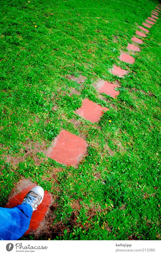 Human being Far-off places Meadow Environment Lanes & trails Legs Feet Going Walking Hiking Planning Future Education Target To go for a walk Tracks