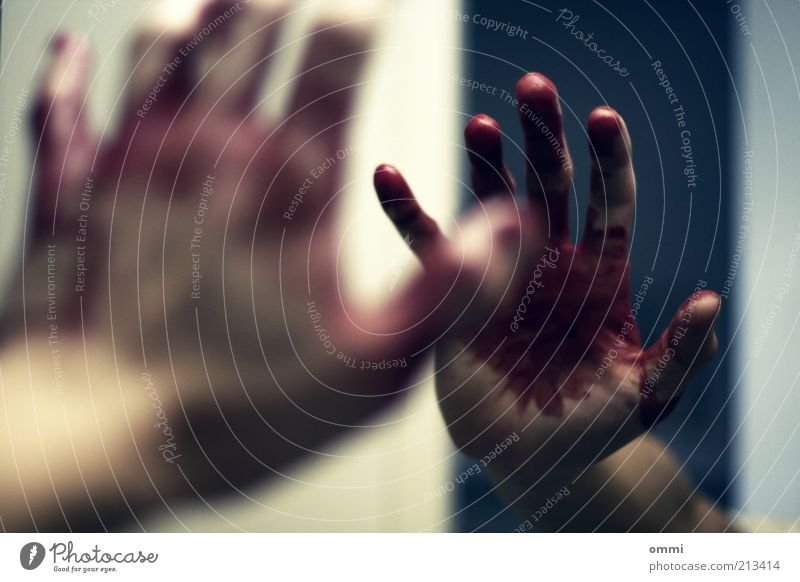 still all 5 fingers Skin Hand Fingers Mirror Authentic Creepy Red Pain Fear Distress Perturbed End Blood bloodstained Mirror image Colour photo Subdued colour