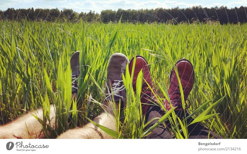 Human being Sky Nature Summer Sun Red Relaxation Calm Life Legs Meadow Feminine Grass Feet Together Leisure and hobbies