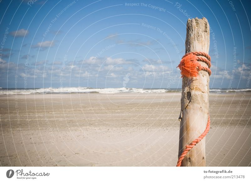 Nature Water Sky Sun Ocean Summer Beach Vacation & Travel Clouds Wood Sand Orange Coast Waves Environment Rope