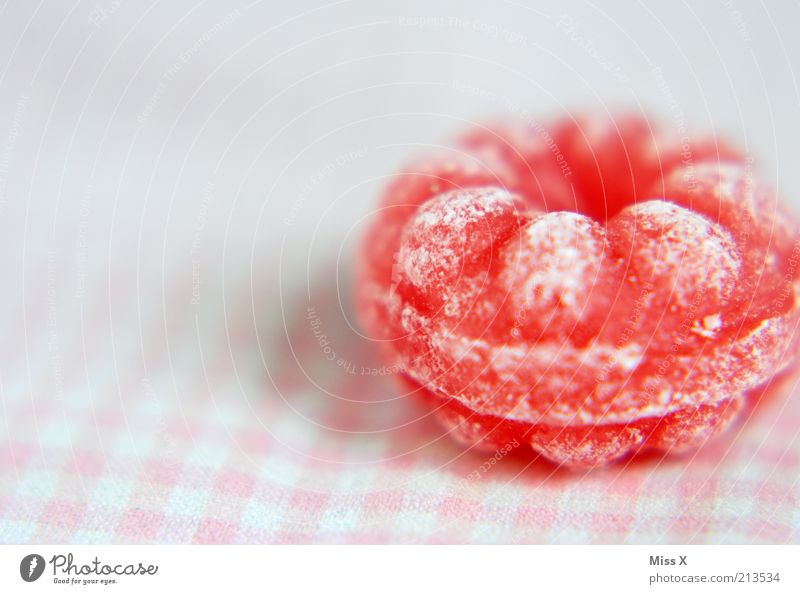 raspberry candy Food Candy Nutrition Small Delicious Round Sour Sweet Pink Raspberry Sugar Fruity Colour photo Multicoloured Studio shot Close-up