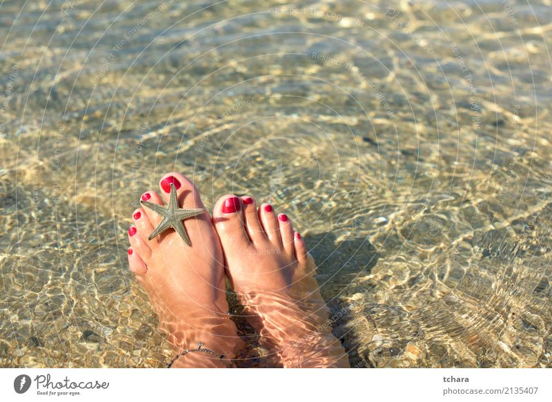 On thee beach Exotic Beautiful Nail polish Relaxation Vacation & Travel Summer Beach Ocean Decoration Wallpaper Woman Adults Nature Sand Natural Blue Colour