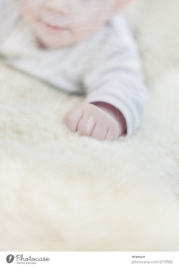 mitten Baby Infancy Arm Hand Fingers 0 - 12 months Lie Authentic Bright Small Natural Cute Warmth Soft Happiness Contentment Emotions Life Future Delicate