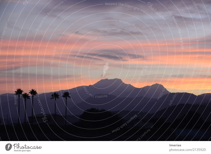 Shades of Mallorca Nature Landscape Sky Clouds Horizon Sunrise Sunset Summer Palm tree Field Mountain Cloud formation Veil of cloud Village Small Town Populated