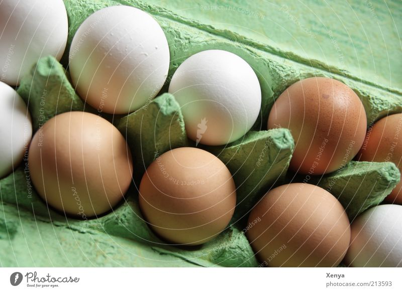 White Green Brown Food Multiple Egg Many Arrange Eggshell Side by side Eggs cardboard Retail sector