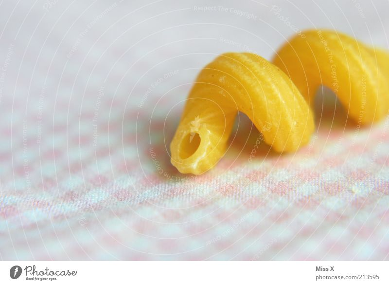 Food Nutrition Dry Long Delicious Organic produce Checkered Spiral Noodles Hard Whorl Undulation Pasta dish