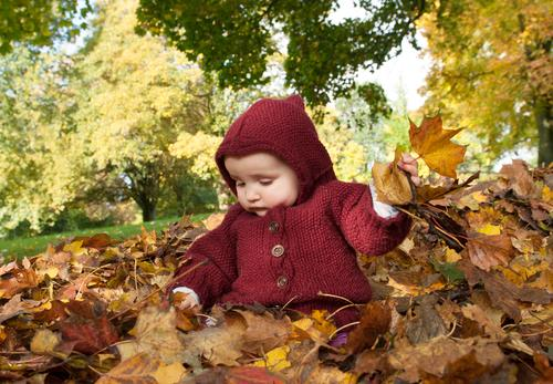 Child Nature Leaf Life Autumn Playing Happy Garden Trip Contentment Park Infancy Sit Baby Study Cute