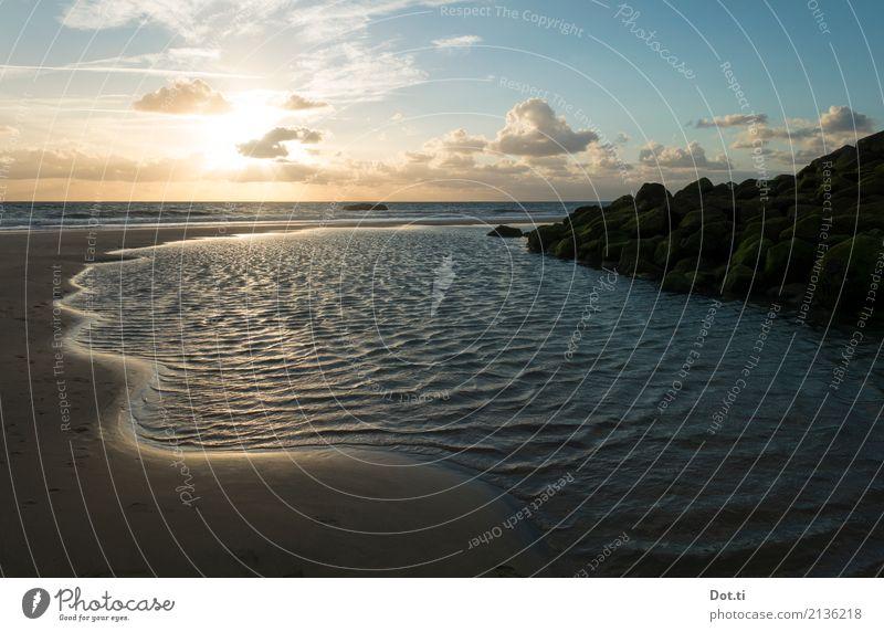 aquitaine Nature Landscape Water Sky Clouds Horizon Sun Sunrise Sunset Sunlight Coast Beach Ocean France Blue Idyll Vacation & Travel Atlantic Ocean