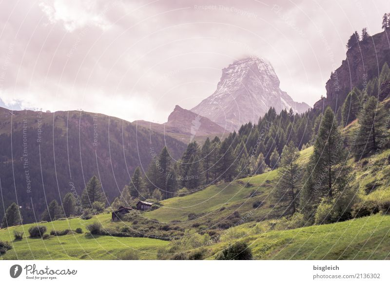 Green Landscape Mountain Hiking Peak Alps Climbing Mountaineering Matterhorn