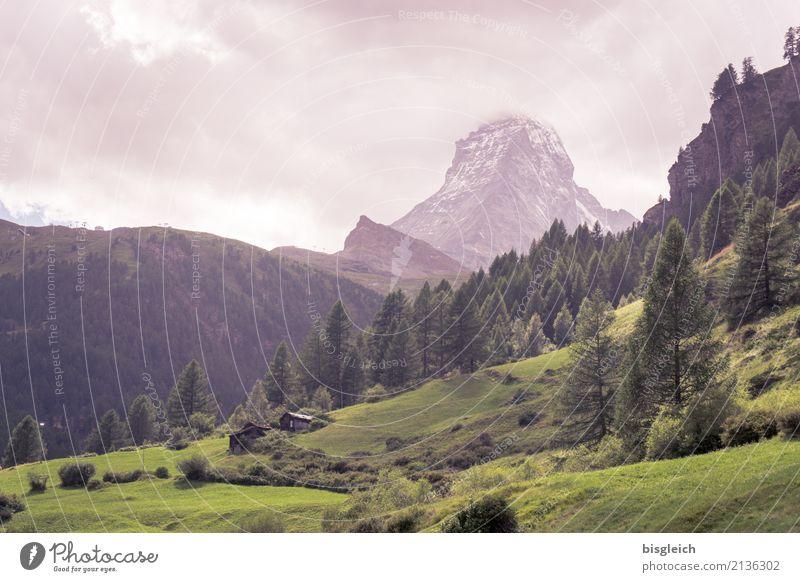 Matterhorn III Mountaineering Climbing Landscape Alps Peak Hiking Green Colour photo Exterior shot Day