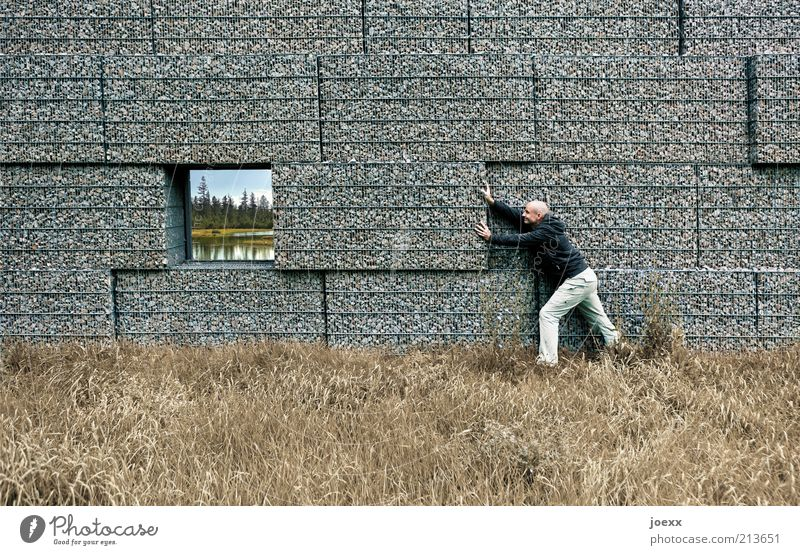 Man Nature Work and employment Window Wall (barrier) Lake Landscape Adults Masculine Idyll Stupid Surrealism Human being Destruction Environmental protection