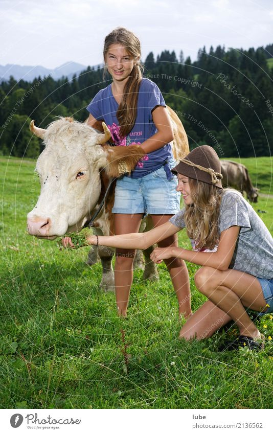 Two Cowgirls Contentment Agriculture Forestry Youth (Young adults) Environment Nature Landscape Summer Animal Pet Farm animal To hold on Forest of Bregenz
